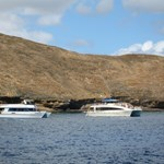 Dive boats at Molokini