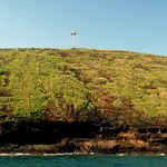 Molokini tower
