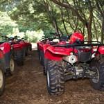 Waipio Valley ATV Tours & Rides