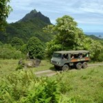 Jungle expedition tours