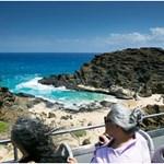South Shore Sea Cliffs Adventure Tour
