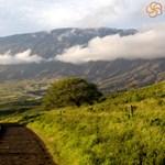 Back Roads Of Maui's Hana Highway