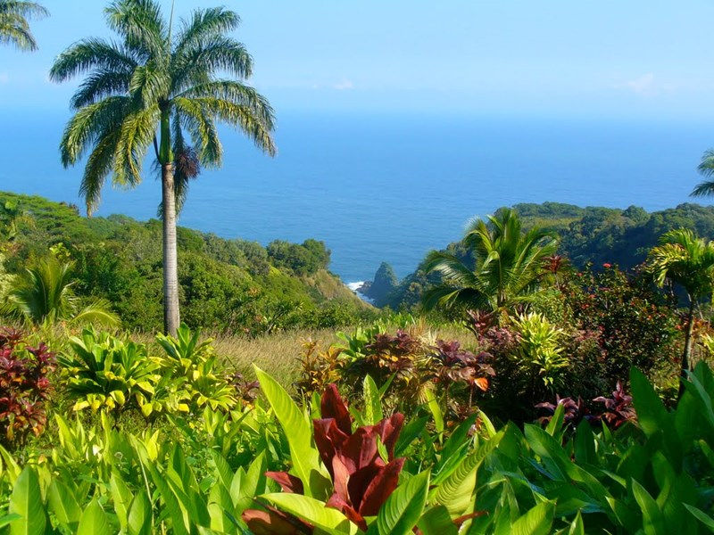 Maui Garden of Eden, Maui - Hawaii