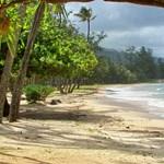 Punalu'u Beach Park, Oahu, HI