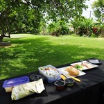 Hawaii Outdoor Guides
