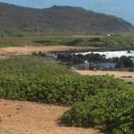 Upper Sandy Beach