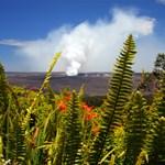Volcanoes National Park, Big Island Hawaii