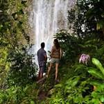 Waterfall View on the Road to Hana