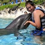 oahu sea life park